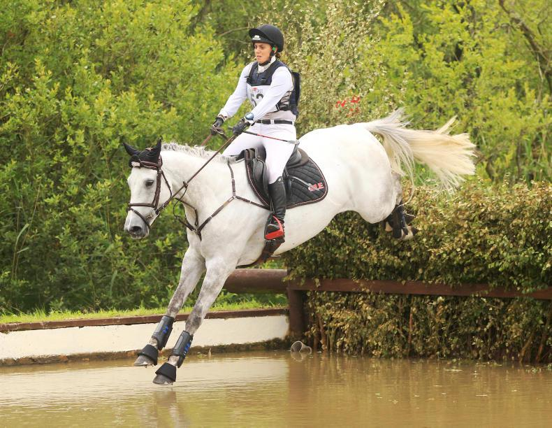 EVENTING: Walshe off to a great start on new venture