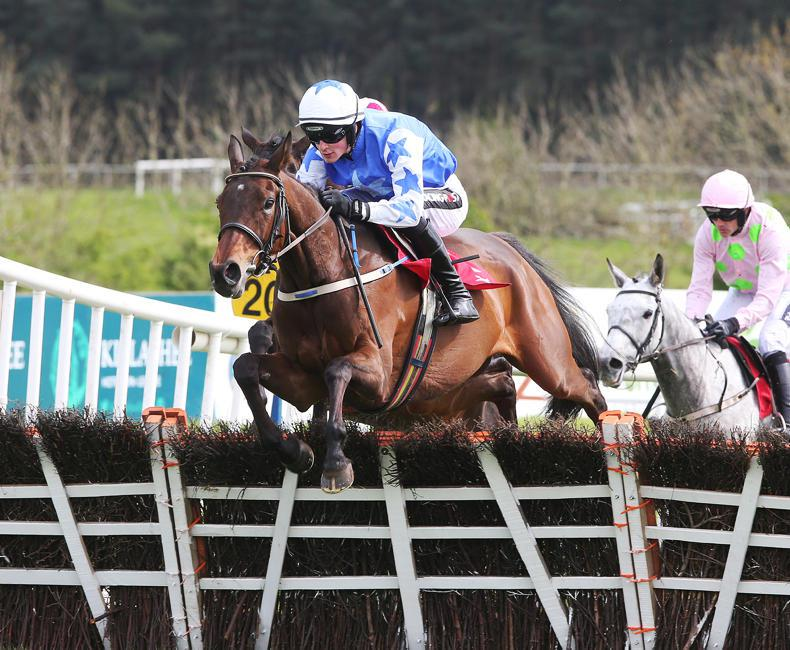 Supreme set for busy evening at Killarney