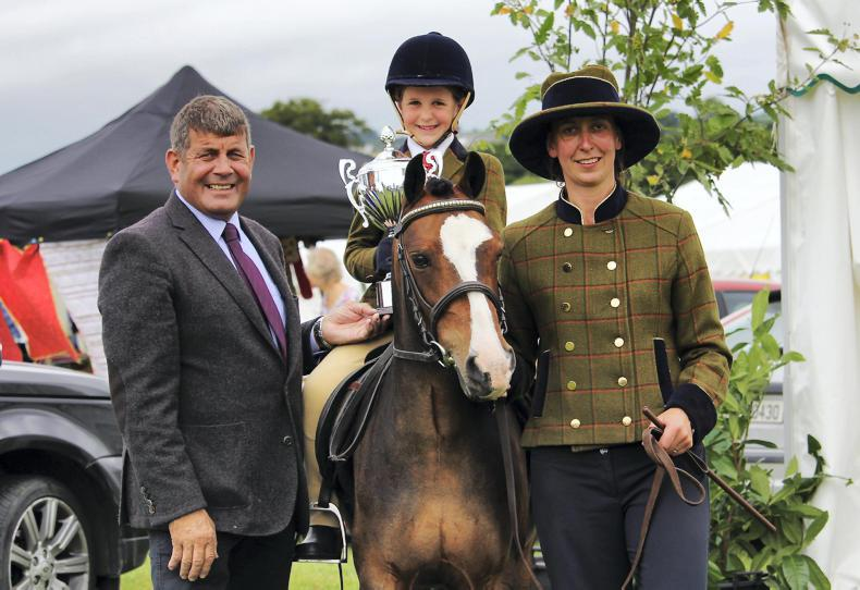 PONY TALES: Multi-tasking ponies at Carnew Show family day