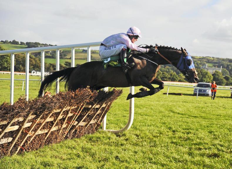 Swamp Fox books return ticket to Galway after Killarney triumph