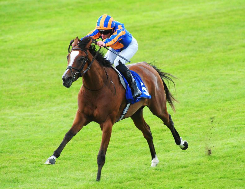 PEDIGREE NOTES: Frankel hits another landmark