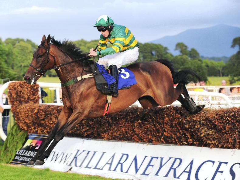 LIMERICK SATURDAY:  Bolger believes in Ballyoisin