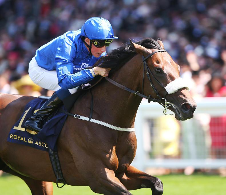 All systems go for Ribchester clash with Churchill in Sussex Stakes