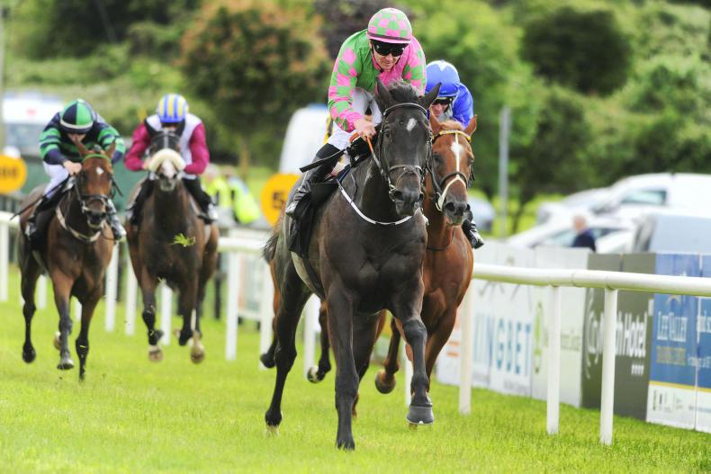 GALWAY FESTIVAL: Mulvany On The Go for valuable Guiness Handicap