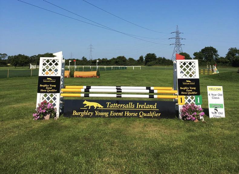 NEWS: Bumper entries for Tatts July Show this weekend