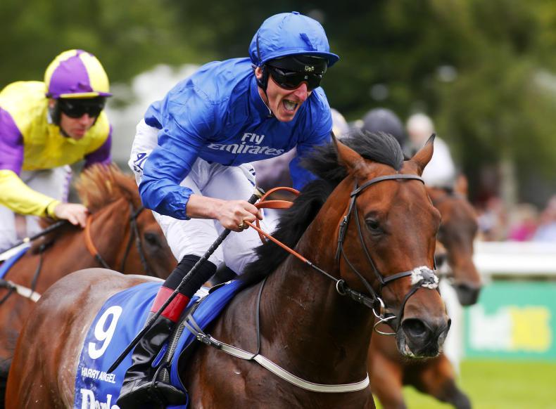 SIMON ROWLANDS: Brando the one to take out of July Cup
