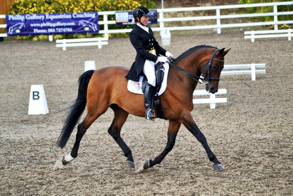Record entry marks exciting growth in Irish dressage