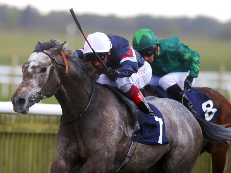 Magical Memory too strong for Hackwood rivals