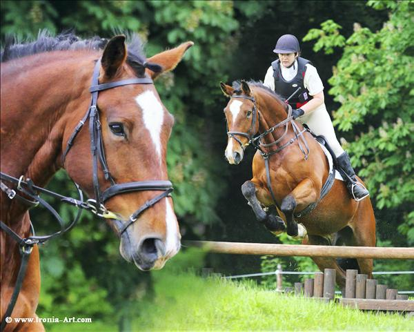 Horse power Sunday, August 3rd - Millstreet; Cappeln; Kreuth.