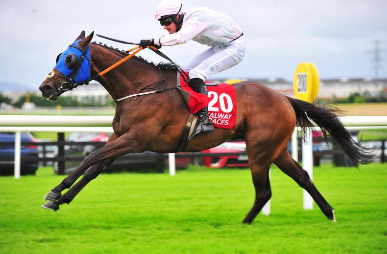 Swamp Fox could attempt Galway double