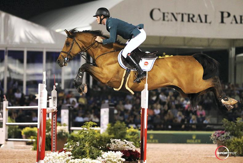 Coyle and Moloney make European team debut in Hickstead