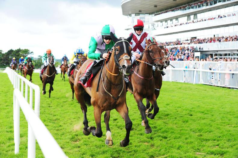 TALKING TRAINER: Eyes on the Galway prizes