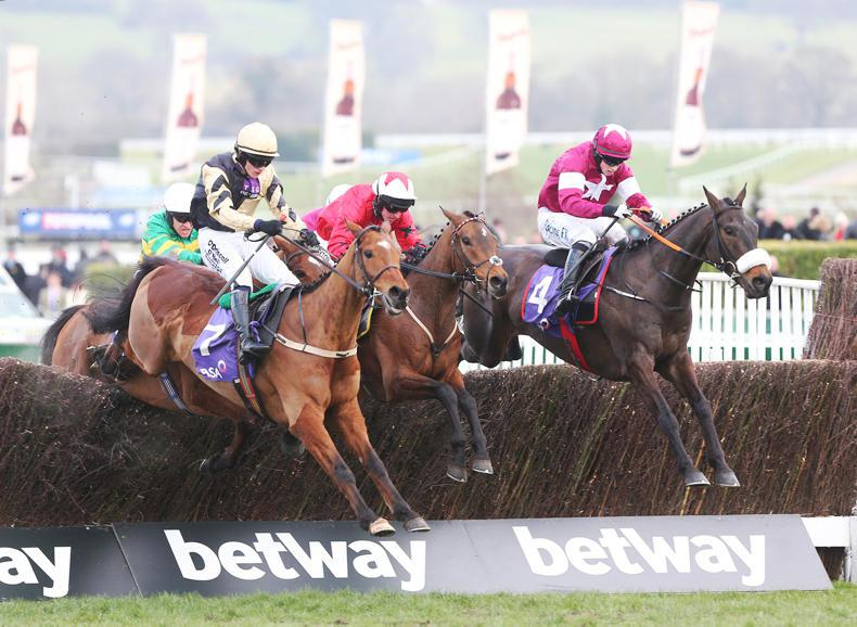 GALWAY NEWS: Mullins likely to run five in Plate