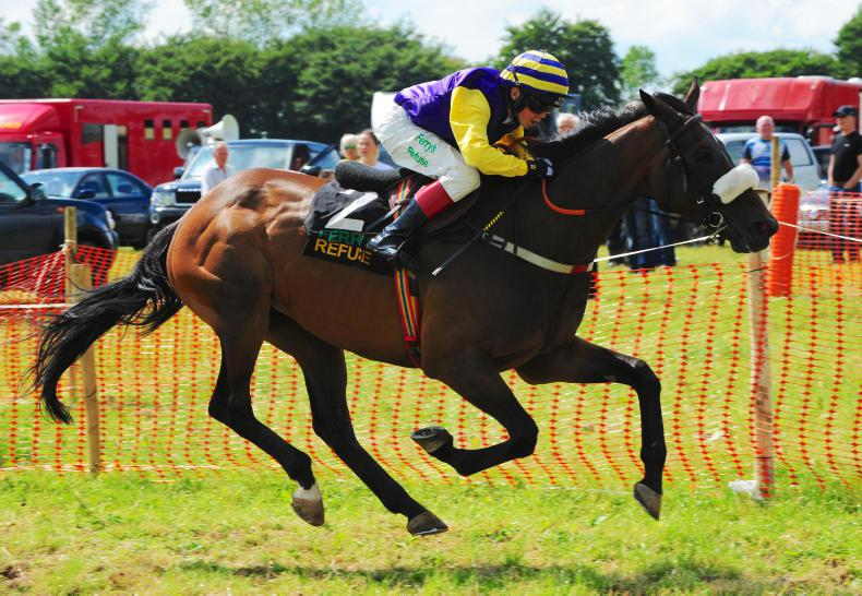 PONY RACING: Treble for Dylan at Lifford