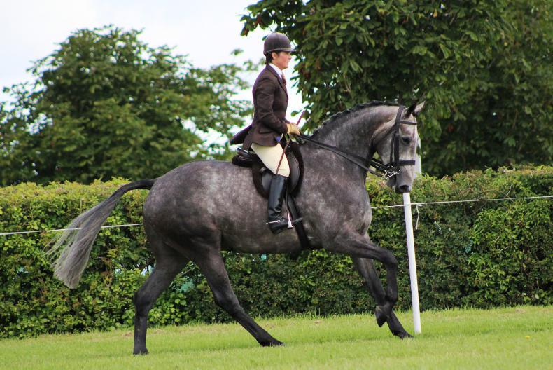 TATTS JULY SHOW:  Top honours for Bloomfield Waterfall