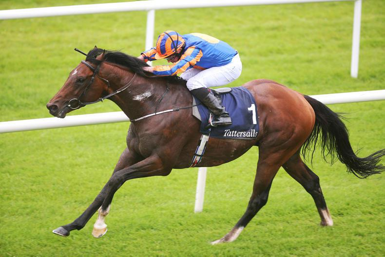 GLORIOUS GOODWOOD: Churchill and Ribchester head Sussex nine