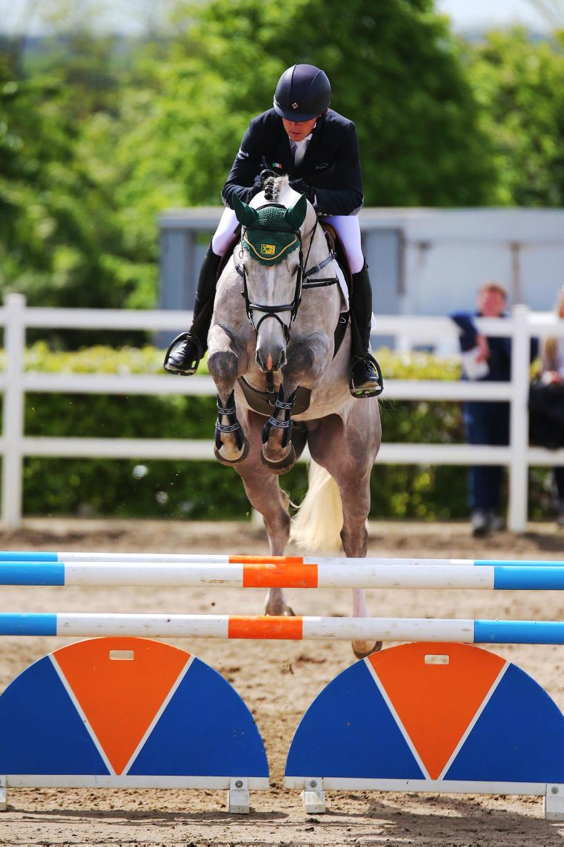 DUBLIN HORSE SHOW 2017:  Rising through the Ranks