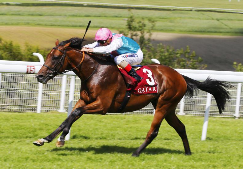 GLORIOUS GOODWOOD:  Expert Eye dazzles on the downs