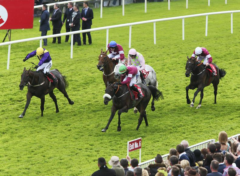 GALWAY TIPS: Your free guide to Wednesday's card at the Galway Festival