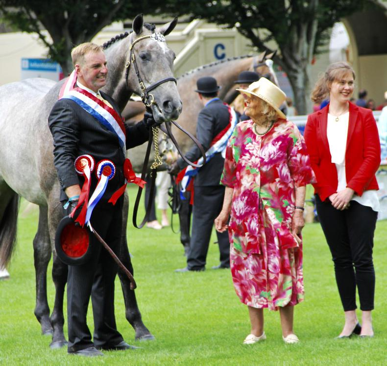 DUBLIN HORSE SHOW 2017: Quality entries for youngstock classes