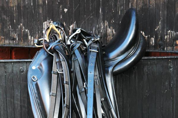 Horse and rider pain linked to saddle fit