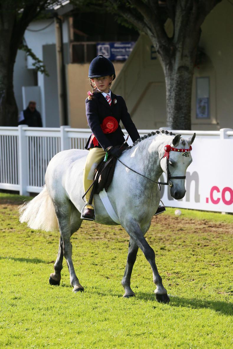 DUBLIN HORSE SHOW 2017: Competitive fare in mini section