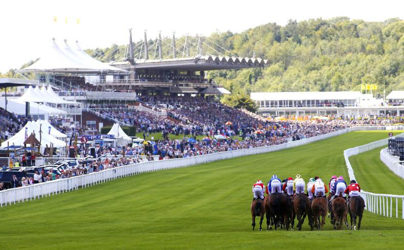GOODWOOD THURSDAY: Nursery winner touches 999/1 in-running