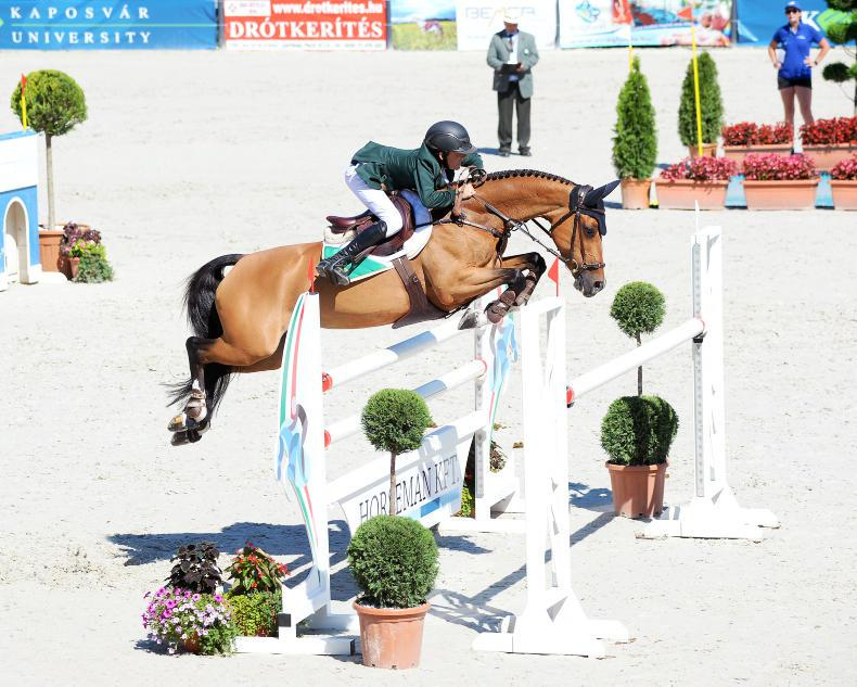 PICTURE DESK:  Celebrating our Pony European riders