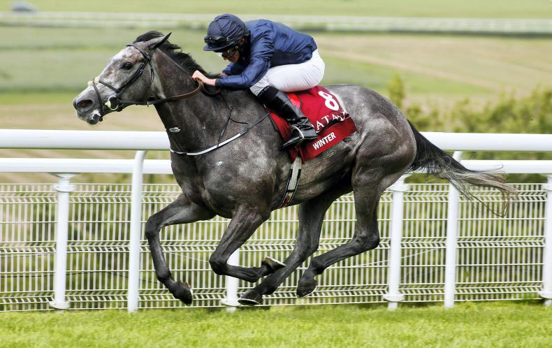 DONN McCLEAN: Winter is this year's Minding