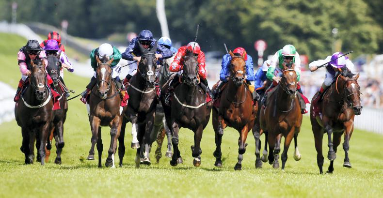 DONN McCLEAN: Glorious uncertainty at Goodwood