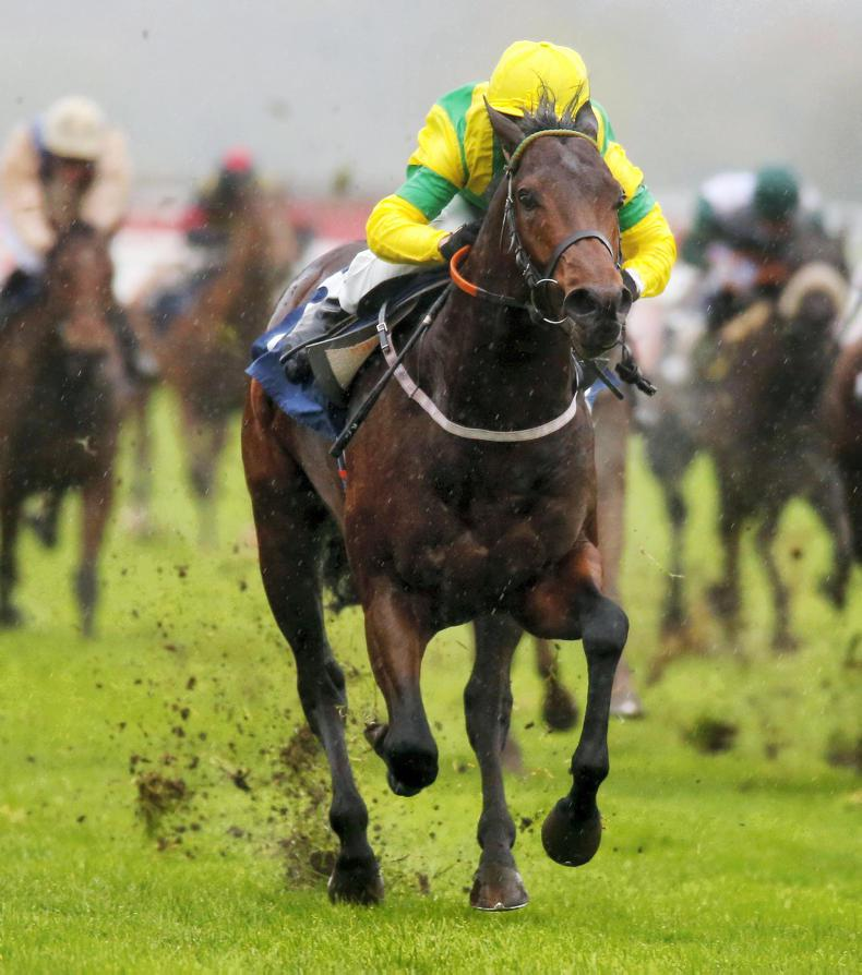 BRITISH PREVIEW: Elsworth's Sir Dancealot appeals in the Cup