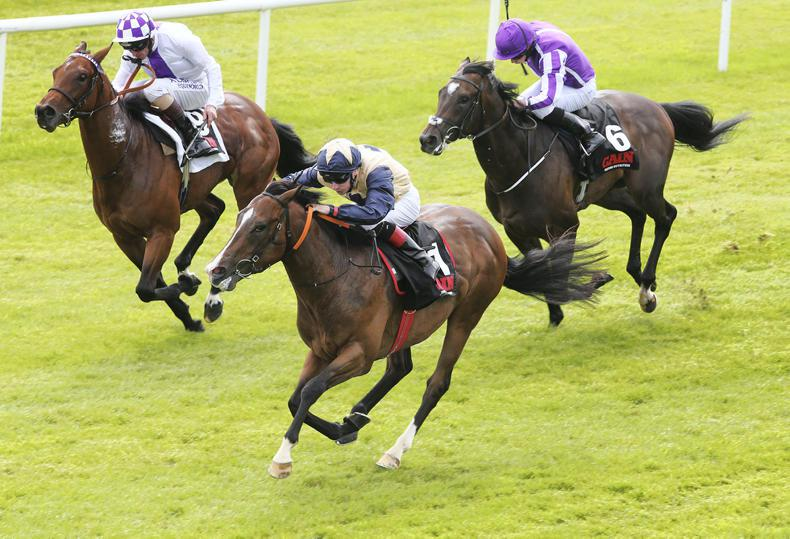 Beckford on target for Phoenix Stakes