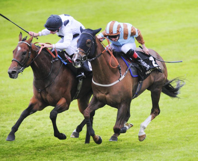 Expert Eye added to National Stakes entries