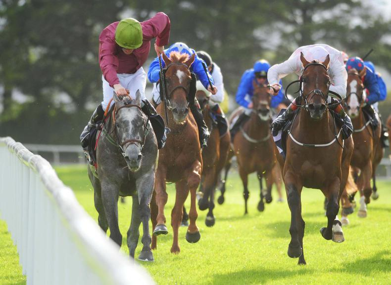 GALWAY TUESDAY: Cheers for Cascavelle and McNamara