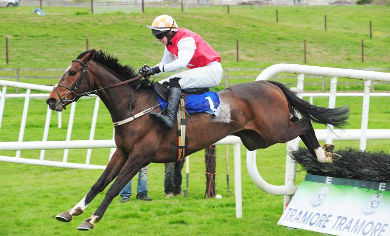 Ballyegan Hero edges out Only Mine in Galway thriller