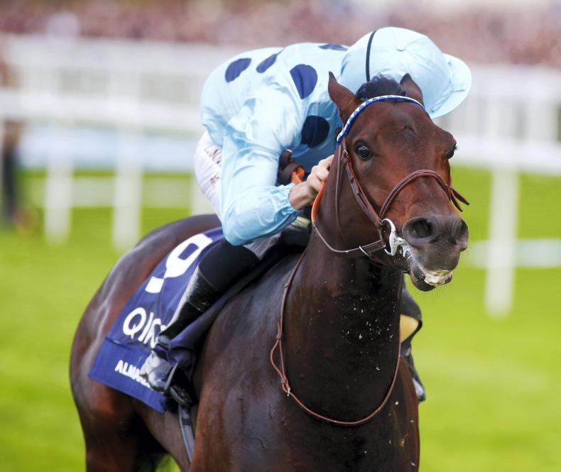 ARQANA DEAUVILLE PREVIEW: The next crop of classic stars