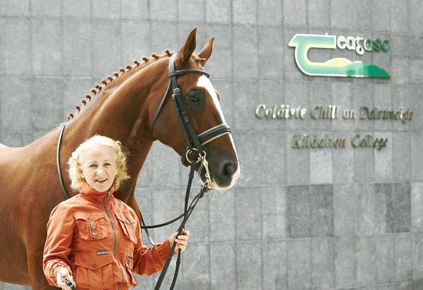 Rosemary Gaffney to sell Dutch