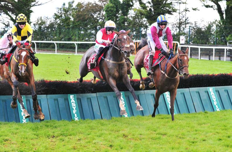 GALWAY SATURDAY: Ballyegan is the Hero