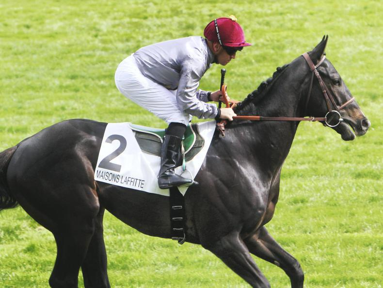 VIDEO: Ballylinch Stud-bred Al Wukair wins Group 1 Deauville feature