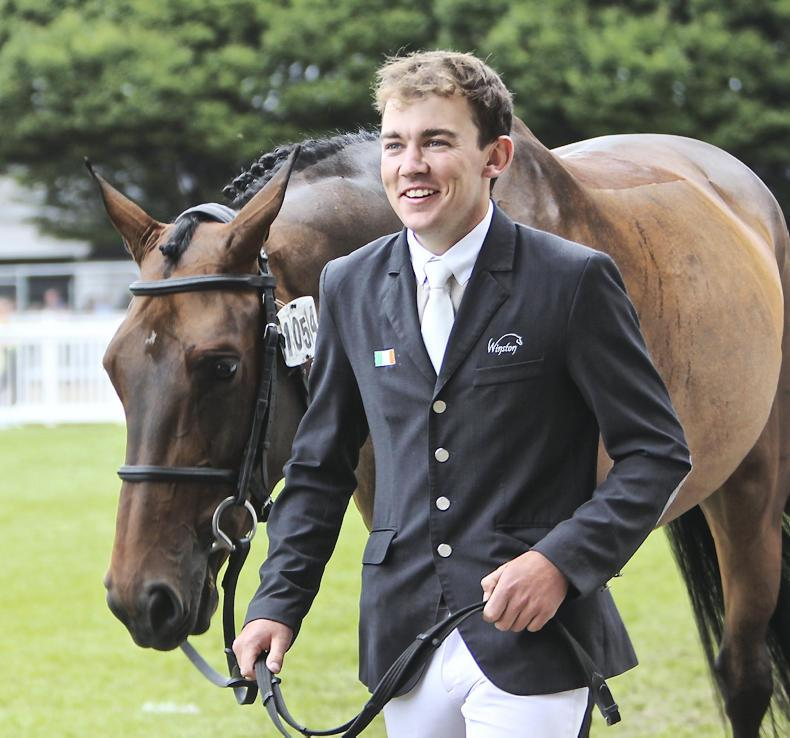 DUBLIN HORSE SHOW 2017:  First Editions first in Broodmare Futurity