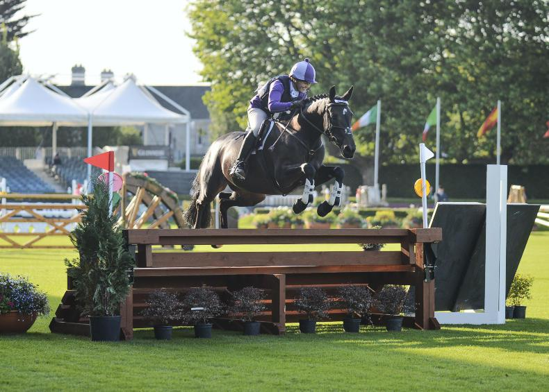 DUBLIN HORSE SHOW 2017: A Masterpiece by Kirby