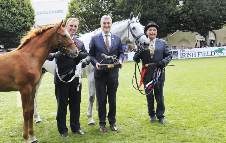 DUBLIN HORSE SHOW 2017:  Roche family land unique double