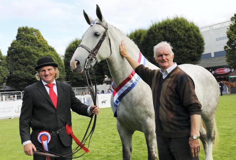DUBLIN HORSE SHOW 2017:  Bouncing back to win at Dublin