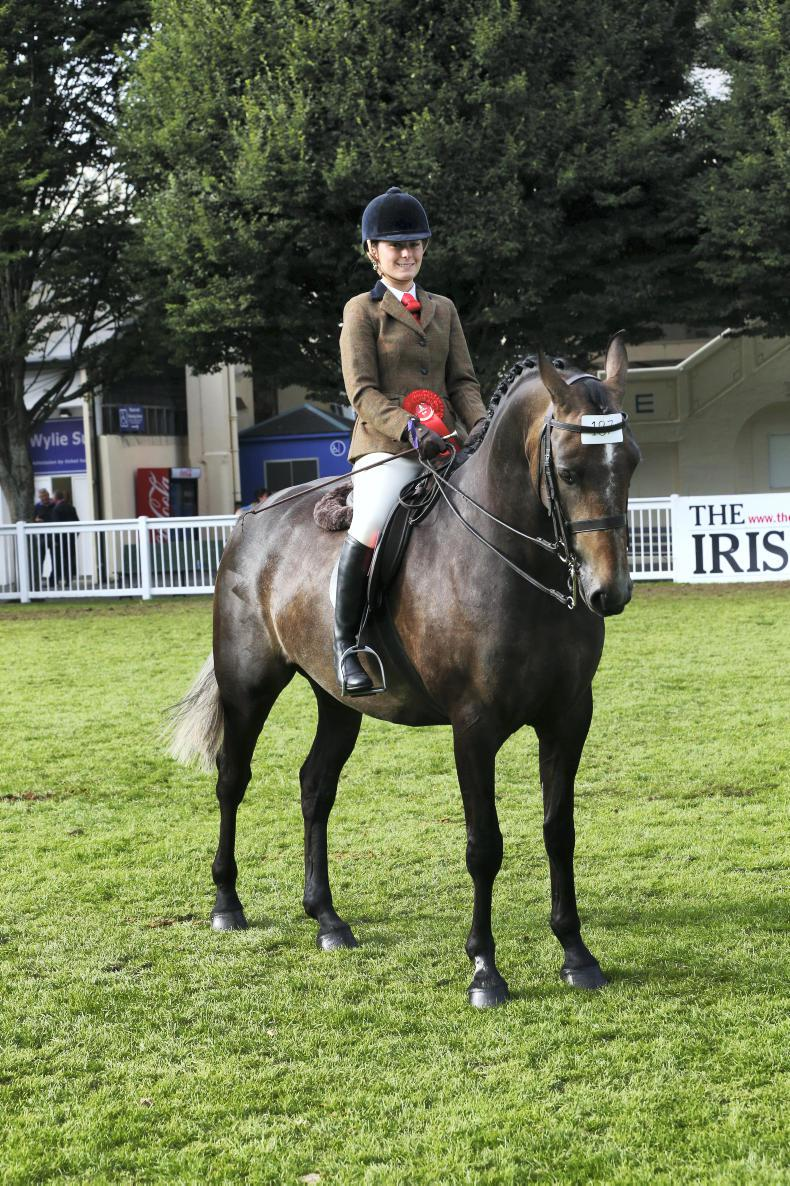 DUBLIN HORSE SHOW 2017: Another success for Moore with Birchill Cassanova