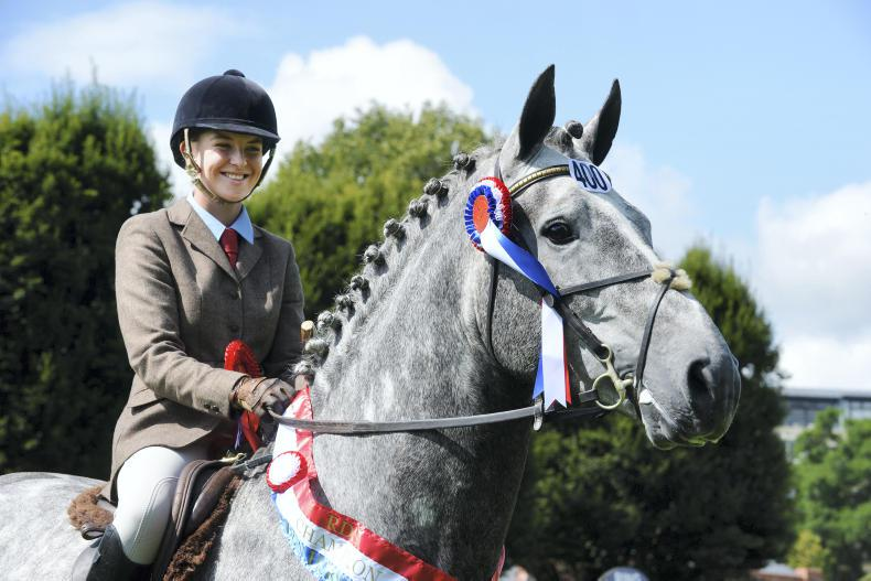 DUBLIN HORSE SHOW 2017: Exhibition from Gortfree Lakeside Lad