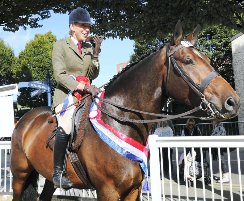 DUBLIN HORSE SHOW 2017:  Champion joy for Crozier's Mastermind
