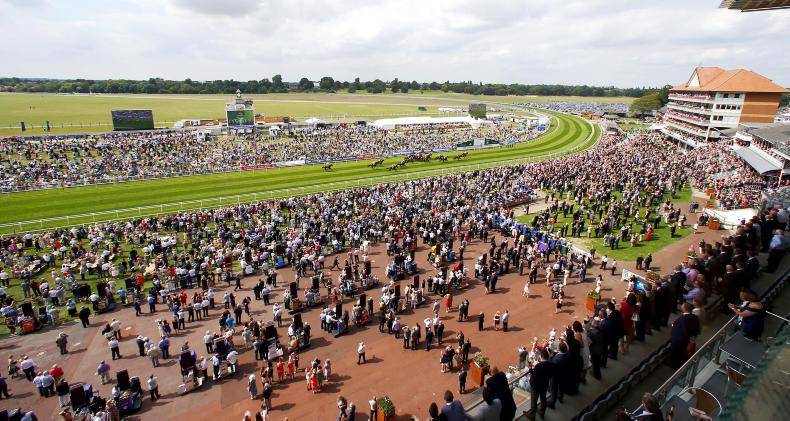 THE WEEK THAT WAS: Curragh infield move a welcome addition