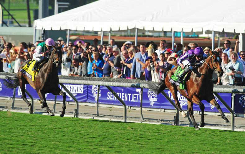 NEWS: ITM becomes an official partner of Breeders' Cup
