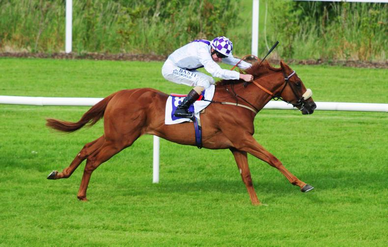 CURRAGH SUNDAY: Theobald is the preferred choice