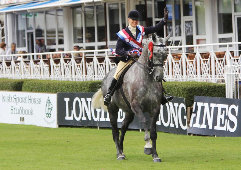 DUBLIN HORSE SHOW 2017: Mossy steals the show